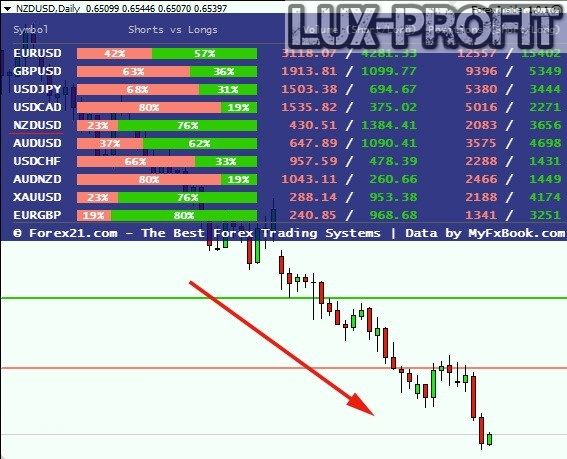 Forex insider signals about property investment basics